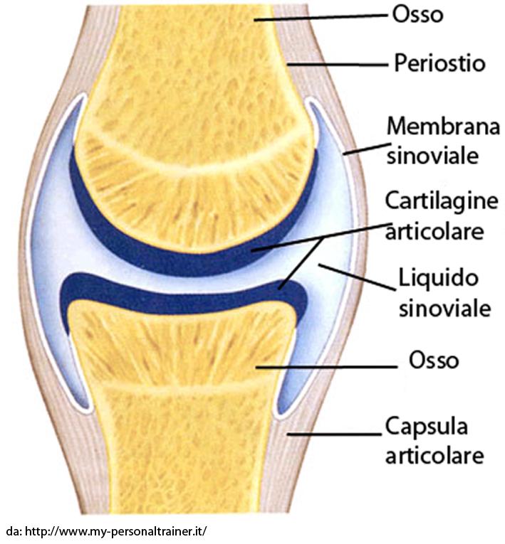 Artrosi - Artrite - Infiammazioni Articolari..