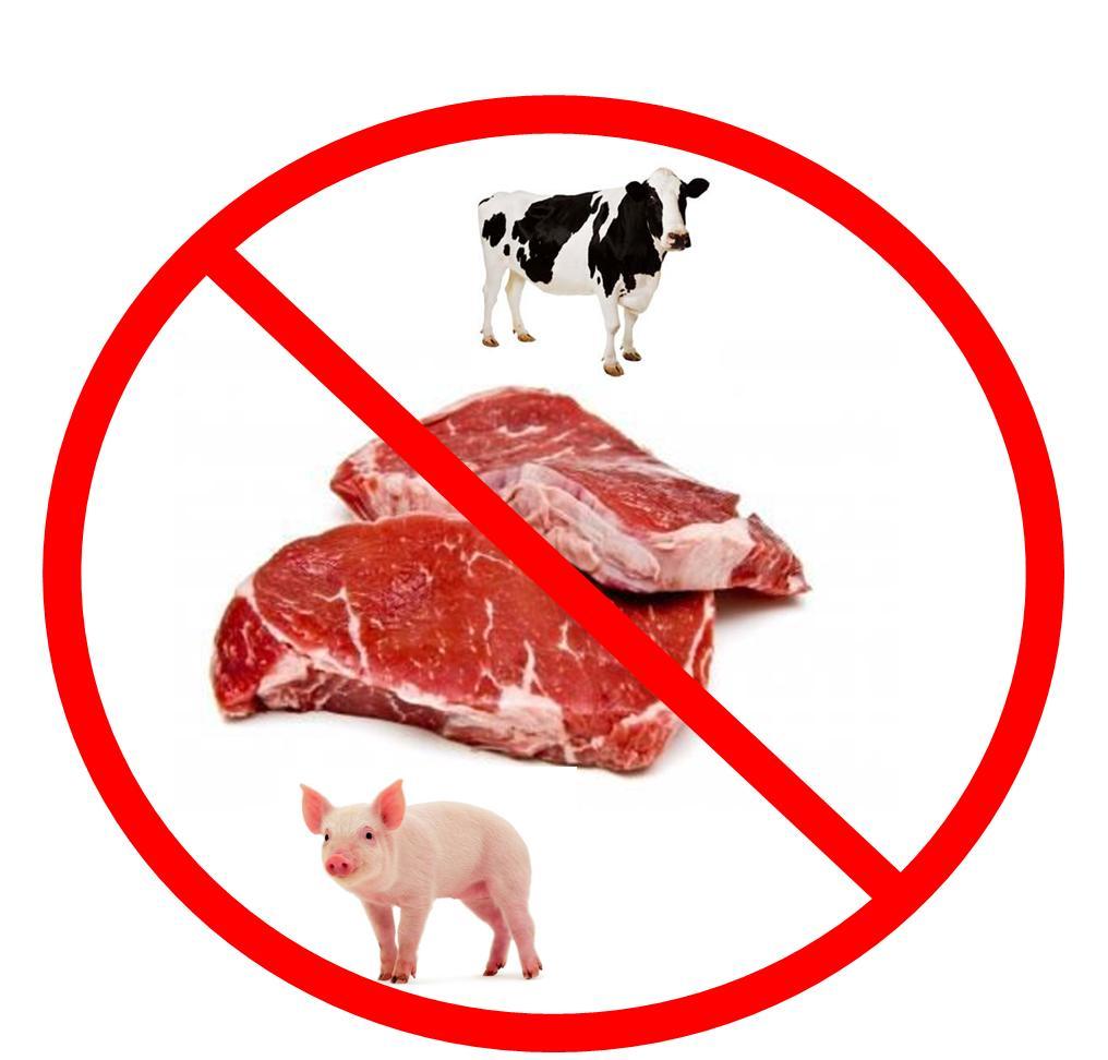 evitiamo la carne carne e cancro